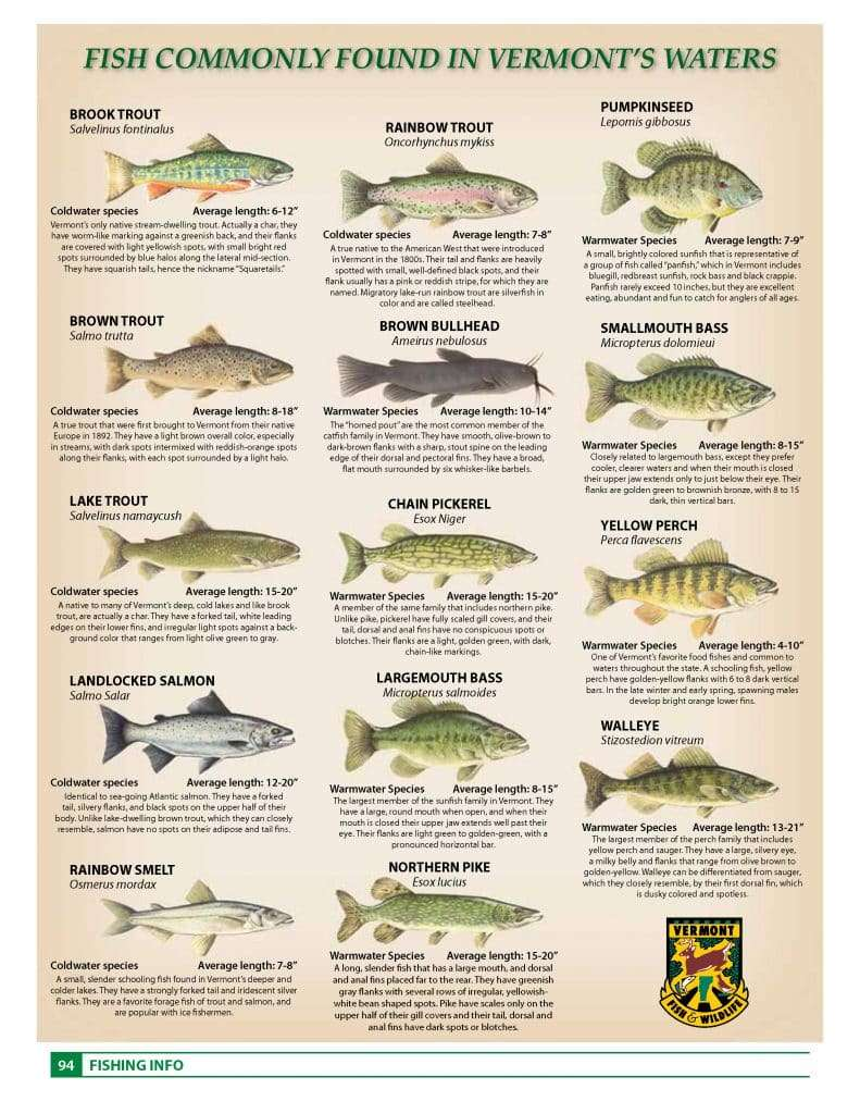 94-97_Where_The_Fish_Are.pdf_Page_1